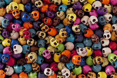 Skulls Photograph - Smiles by Mike Herdering