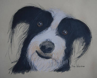 Pastel Photograph - Smiling Dog by M Valeriano