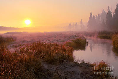 Photograph - Smoke And Fog by Katie LaSalle-Lowery