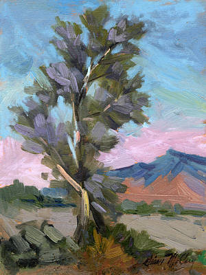 Painting - Smoketree Overcast Light by Diane McClary