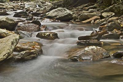 Caravaggio - Smokey Mountain Stream 6079 by Michael Peychich