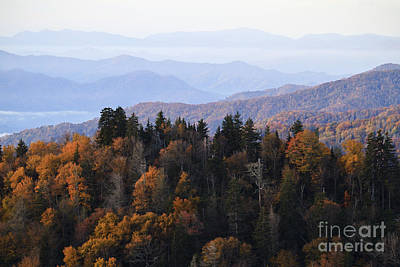 Photograph - Smoky Mountain Autumn by Dennis Hedberg