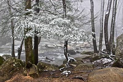 Smoky Mountain Stream Art Print