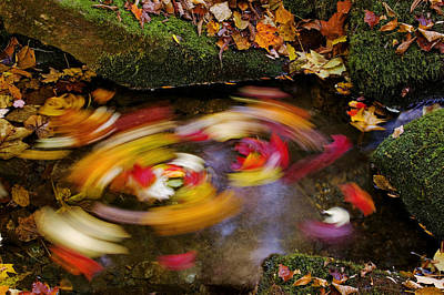 Smoky Mountain Whirlpool Art Print by Rich Franco