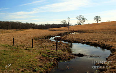 Photograph - Snake Creek by Joy Tudor