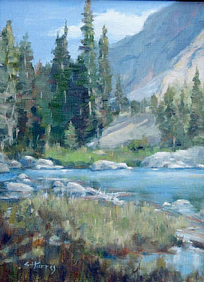 Snake River Art Print by Sandra Harris