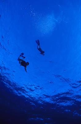 Snorklers Diving Into A Deep Blue Art Print by Jason Edwards