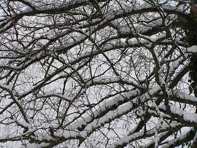 Snow Against A Grey Sky Art Print