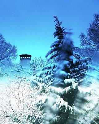 Digital Art - Snow Bow by Lizi Beard-Ward