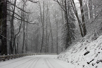 Photograph - Snow Covered - 0016 by S and S Photo