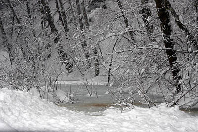 Photograph - Snow Covered - 0023 by S and S Photo