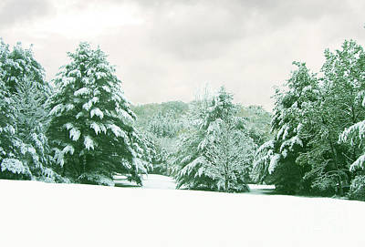 Art Print featuring the photograph Snow Covered Countryside by Michael Waters
