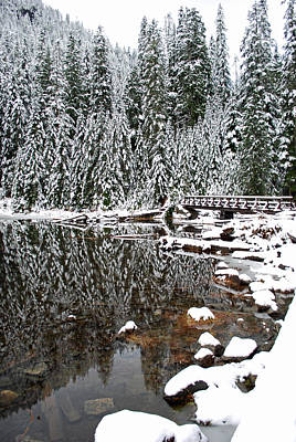 Pilchuck Photograph - Snow Covered Pines On Lake 22 by Twenty Two North Photography