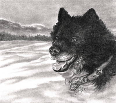 Monotone Drawing - Snow Dog by Kathleen Kelly Thompson
