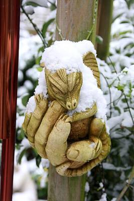 Photograph - Snow Dragon In The Palm by Ed Lukas