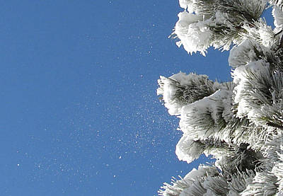Snow Flakes Against A Blue Sky Art Print