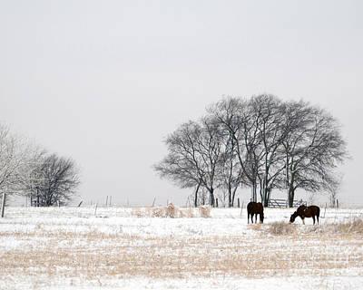 Snow Horses Art Print