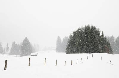 Photograph - Snow Is Falling In Winter Landscape by Matthias Hauser