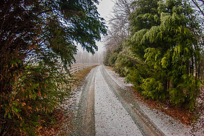 Photograph - Snow Kissed Lane by Gene Hilton