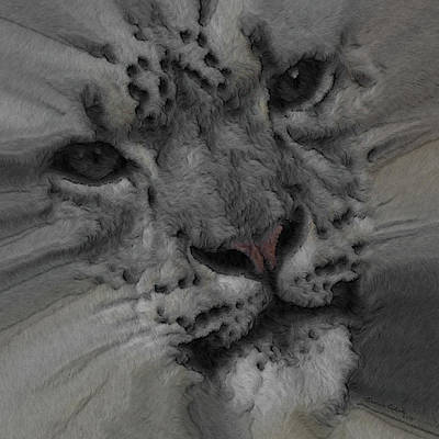Photograph - Snow Leopard Painterly by Ernie Echols