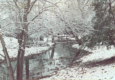 Art Print featuring the photograph Snow On The Bayou by Louis Nugent