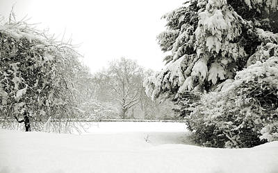 Photograph - Snow Packed Park by Lenny Carter