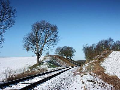 Photograph - Snow Rail by Ed Lukas