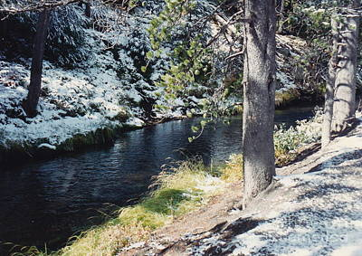Photograph - Snow Stream Sun And Shadows by Barbara Plattenburg