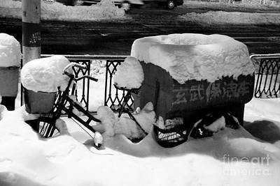 Photograph - Snowed In by Dean Harte