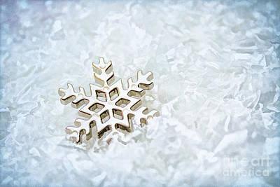 Snowflake Art Print by Darren Fisher