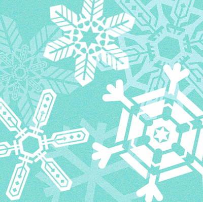 Photograph - Snowflakes by David Nicholls