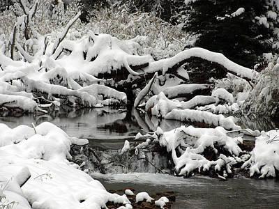 Photograph - Snows Fall Up The Creek by DeeLon Merritt
