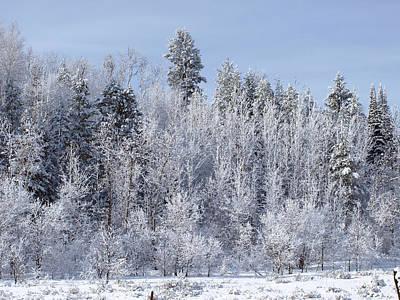 Photograph - Snows Hit Again In Early Spring by DeeLon Merritt