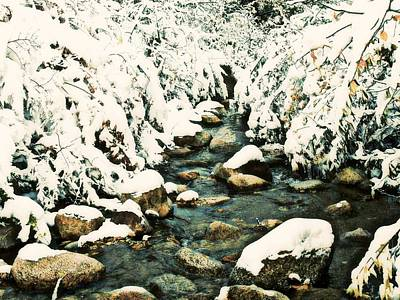 Photograph - Snowy Creek by Clarice  Lakota
