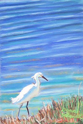Snowy Egret At Sanibel Island Art Print