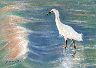 Snowy Egret At Sunset Art Print