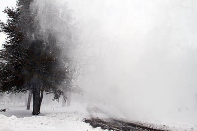 Photograph - Snowy Gust by Mark J Seefeldt