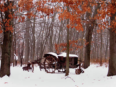 Snowy Implement Art Print by Ed Golden