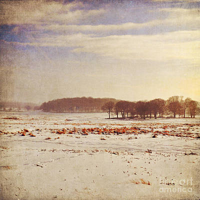 Snowy Landscape Art Print by Lyn Randle