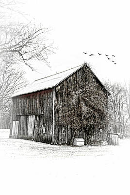 Snowy Morning Art Print by Mary Timman