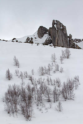 Y120907 Photograph - Snowy Mountains by Arsogar