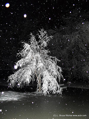 Mixed Media - Snowy Night In The Park by Bruce Ritchie