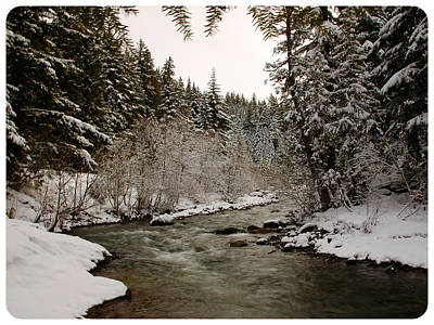 Photograph - Snowy River by Steve McKinzie