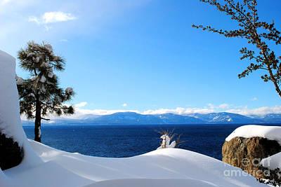 Snowy Tahoe Art Print by Sean McGuire