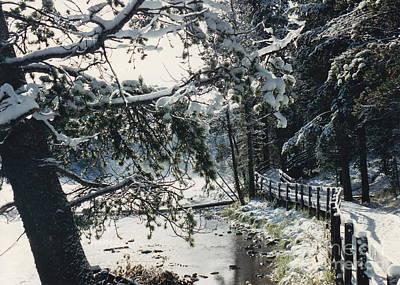 Photograph - Snowy Yellowstone Walkway by Barbara Plattenburg