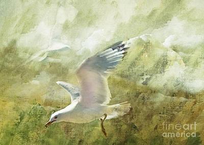 Waterfowl Mixed Media - Soar by Elaine Manley