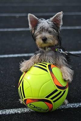 Soccer Dog Art Print by Dawn Moreland