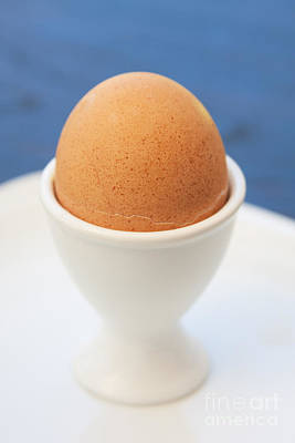 Soft-boiled Egg  Original