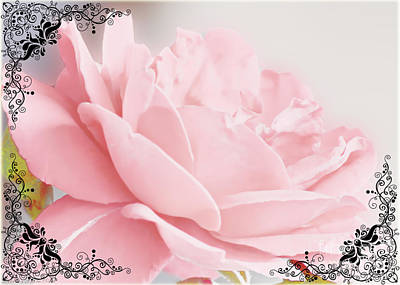 Photograph - Soft Pink Rose Greeting Card Blank by Debbie Portwood