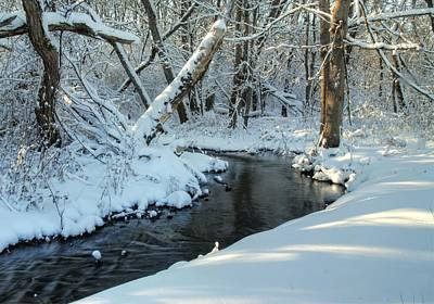 Soft Snowy Woods Original by Donna Caplinger